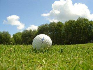 Golfin historia